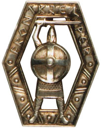 Norway front-line badge
